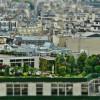Zelenou zahradu můžete mít i na střeše! Jak na to?